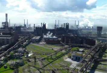 Chelyabinsk Metallurgical Plant: la storia, l'indirizzo, i prodotti, la gestione