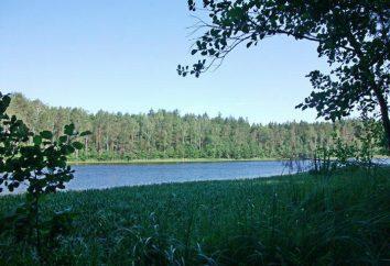 Quel est le lac le plus profond en Biélorussie? brève description