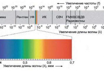 Photoroentgenography ao contrário de raios-X: uma descrição dos procedimentos e a eficácia das respostas