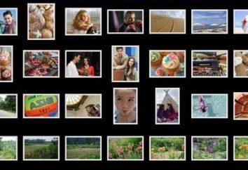 So übertragen Sie Bilder auf einen Computer mit dem IPhone: Unterricht für Anfänger