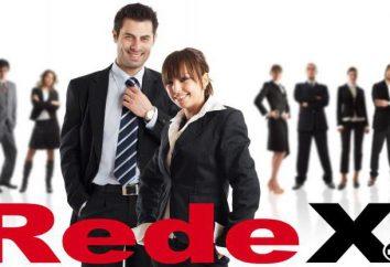proyecto REDEX: opiniones