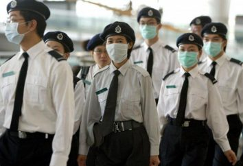 Czy ptasia grypa mutować i spowodować pandemię wśród ludzi?