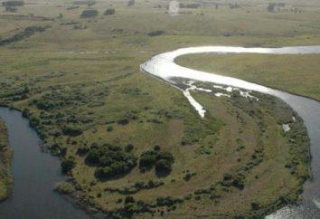 Rzeka Urugwaj – egzotyczny zakątek Ameryki Południowej