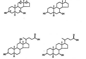Gli acidi biliari. La funzione degli acidi biliari. biochimica del fegato