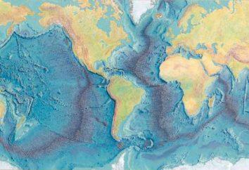 Każda część oceanu – to fragment całości