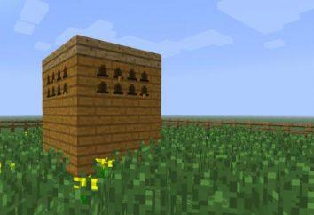 """Stiamo pensando a come fare un apiario in """"Maynkraft"""""""