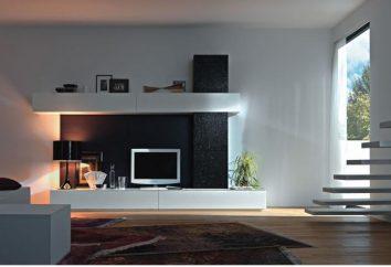 moderno de la pared priobrazyat su sala de estar!