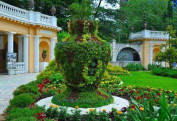 Arboretum, Soczi: adres, zdjęcia i opinie