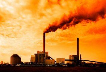 5 powodów, aby przestać się martwić o zmianach klimatu