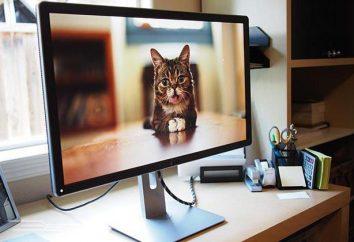 Jak skonfigurować monitor do dokładnego koloru przy użyciu oprogramowania?