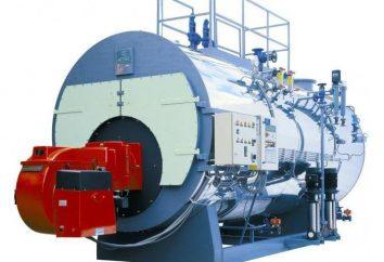 calderas de vapor: el principio de funcionamiento y el dispositivo