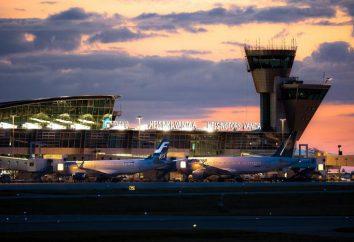 Aeropuerto Vantaa (Helsinki). Un poco más que el aeropuerto