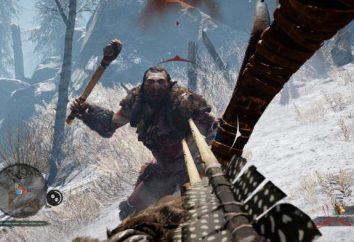 Far Cry Primal: requisitos de sistema no PC e revisão