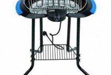 Elektryczny grill Grill: wybór funkcji