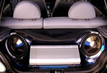 Placer le caisson de basse dans la voiture: faire le bon choix de haut-parleur