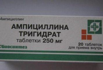 """""""Ampicillin"""": Gebrauchsanweisung, Bewertungen. Analoga von """"Ampicillin"""""""
