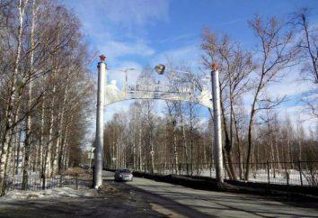 granja Detskoselskiy, San Petersburgo: descripción, área, ubicación y comentarios
