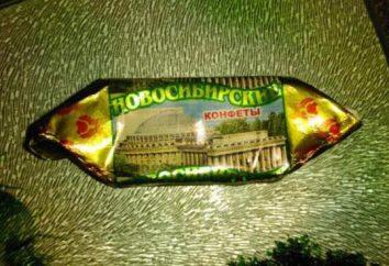 """fabryka czekolady """"Nowosybirsk"""" – klucz do sukcesu w produktach wysokiej jakości"""