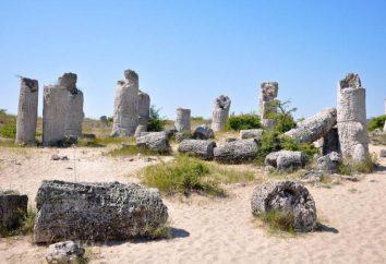 Stone Forest w Bułgarii: opis, historia i ciekawostki