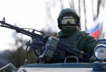 La legge marziale in Russia: I motivi possibili per l'introduzione di