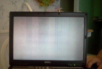 Biały ekran na laptopie i innych wad boczne obrazu: przyczyny i metody diagnozowania