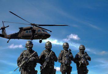 las tropas rusas de la Guardia Nacional: Estructura, símbolos de mando