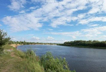 La izquierda afluente del Dniéper. Afluentes del río Dnieper