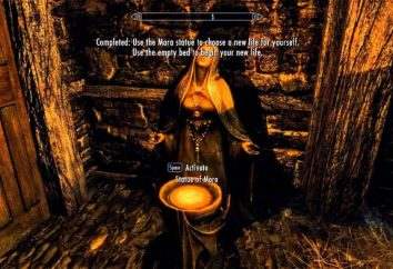 "Skyrim: ""Start Alternativa"". Skyrim: fashion"
