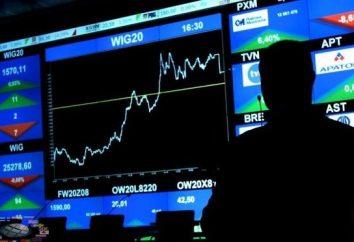 Como ganhar dinheiro na bolsa de valores: orientação prática e recomendações úteis