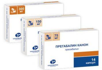 """Lek """"Pregabalinę kanon"""": instrukcje użytkowania i sprzężeniem zwrotnym"""