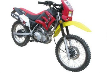 """Irbis"" (motos): gamme, prix, avis"