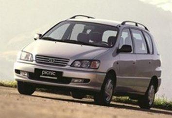 Toyota Picnic – das Familienauto für eine romantische Reise