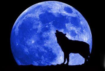 W jaki sposób pełni księżyca na człowieka? Jak złożyć życzenia przy pełni księżyca? Osoby urodzone w pełni księżyca