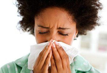 Quantos dias um paciente com gripe é contagiosa? quarentena Influenza