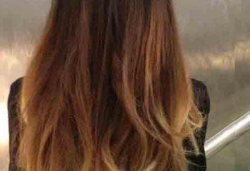 Colorare shampoo per capelli: recensioni, recensione