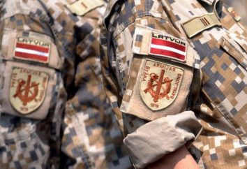 Army of Latvia: il numero e armamento