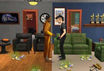 """Cómo introducir el código en """"The Sims 2""""? """"Los Sims 2"""" – códigos en la ropa"""