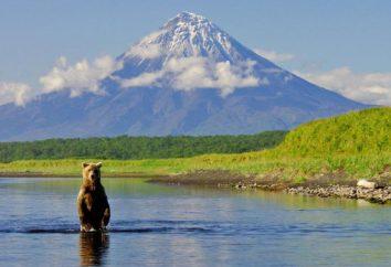 Specjalnie chronione obszary przyrodnicze. Rodzaje obszarów chronionych i ich przeznaczenie