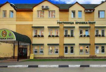 """Hotel """"El pequeño mapache"""" (Krasnogorsk): descripción, comentarios"""