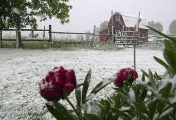 Regardez l'interprétation des rêves: la neige en été – une perte ou de joie?