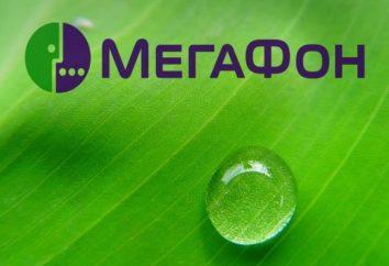 """""""Megafone"""" tarifa """"Transition to Zero"""": comentários, conexão"""