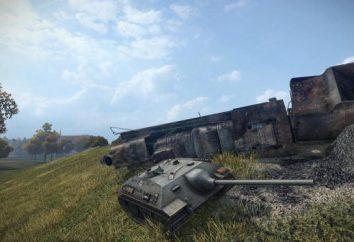 Come si gioca sulla E-25 in World of Tanks? Hyde E-25 nel gioco World of Tanks