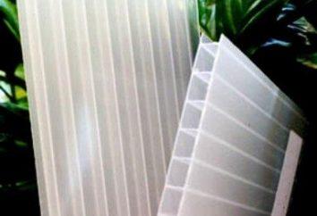 Come installare una serra in policarbonato? Crescente nel policarbonato serra