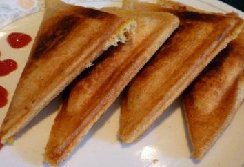 sandwichs chauds à la hâte: recettes