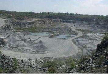 Os recursos minerais da região de Novosibirsk: uma descrição, uma lista de nomes e de campo