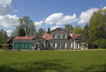 Mosca, museo-maniero: descrizione, foto