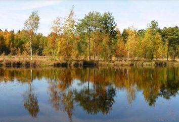 Black Lake (Zelenograd) planują letnie wakacje