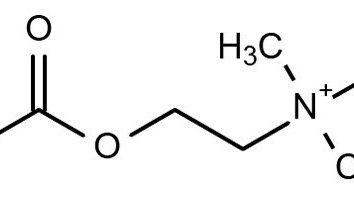 L'acetilcolina è un neurotrasmettitore. Acetilcolina: caratteristiche, preparati, proprietà