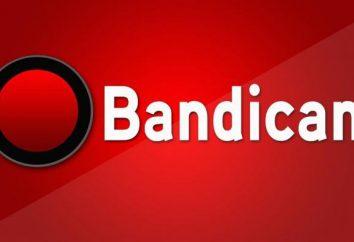 """Jak dostosować dźwięk do """"Bandikame"""": szczegółowe instrukcje"""