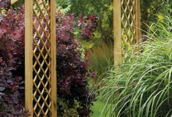 Arch Garden: podejmowania własnych rąk